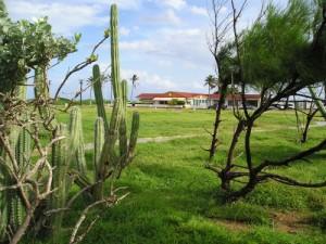 Aruba Golfclub
